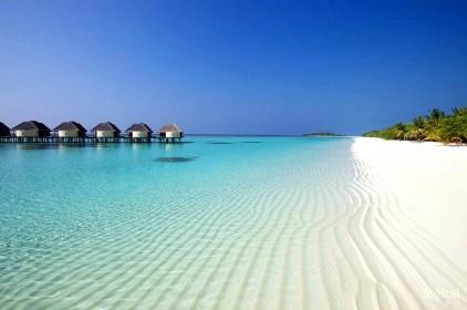 Рекламный тур на Мальдивские острова. Последние места