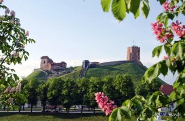 С июля визовые службы Литвы откажутся от услуг посредников в Беларуси