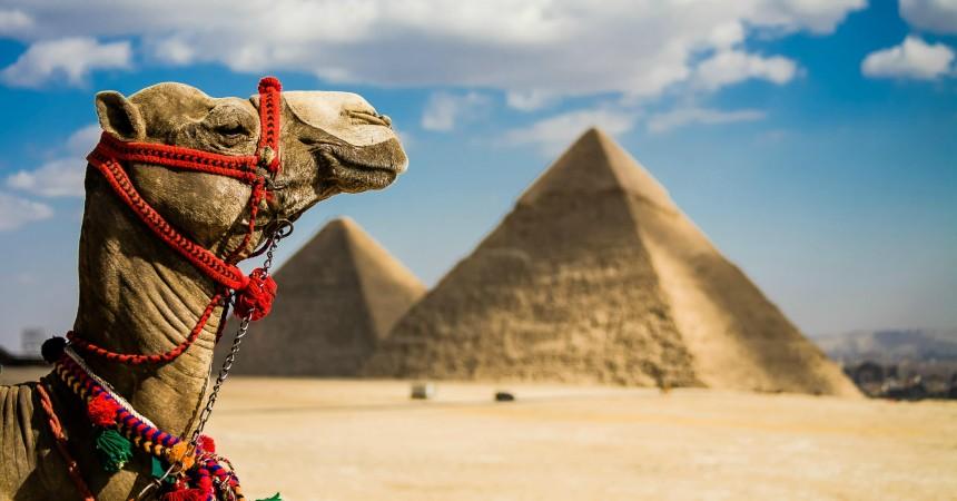 Российские туристы хотят купить туры в Египет из Минска (статистика портала Traveling.by)
