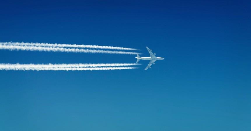 «Белавиа» украсила свои самолёты васильком