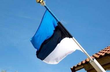 В Беларуси — новый посол Эстонии. Кто пришел на смену Майту Мартинсону?