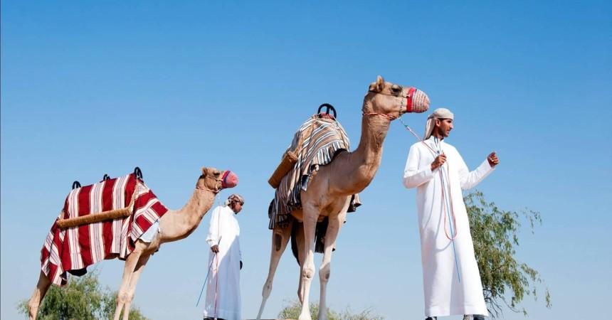 Рекламный тур по региону Рас-аль-Хайма (ОАЭ) от «Санни Трэвел»