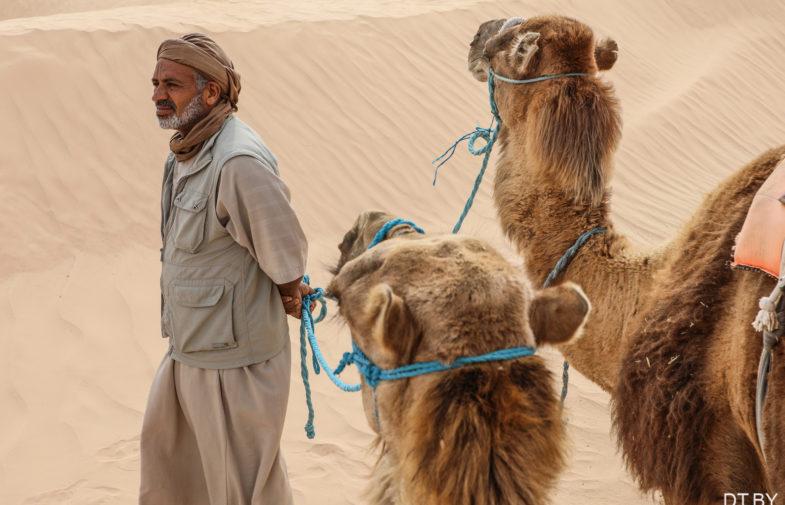 «Мархаба, Тунис!» ИНТЕРСИТИ и Carthage Group провели большой североафриканский инфотур