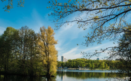 VETLIVA.RU — легко понять, где отдыхать!