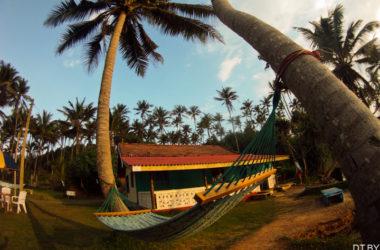 Шри-Ланка приостанавила выдачу виз по прибытию из-за коронавируса